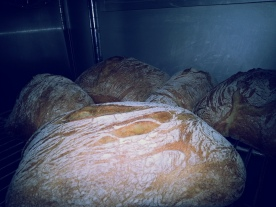 Ciabatta- Italian for Slipper
